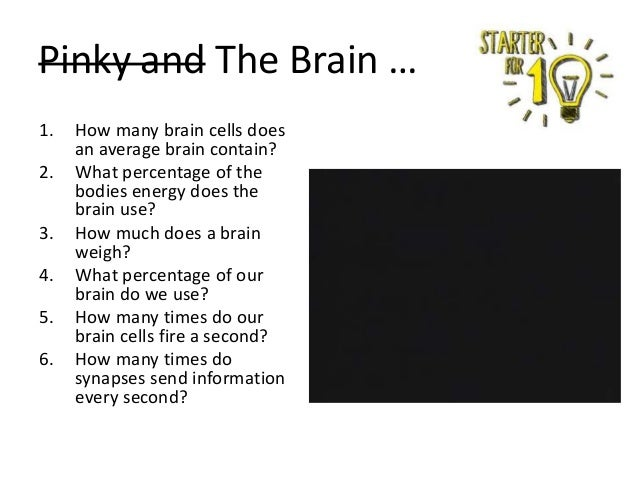 Pinky and The Brain … 1. 2. 3. 4. 5. 6.  How many brain cells does an average brain contain? What percentage of the bodies...