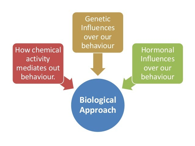 biological approach to psychopathology essay This free science essay on the biological perspective is perfect for science students to use as an example  in psychology the biological approach can be very .