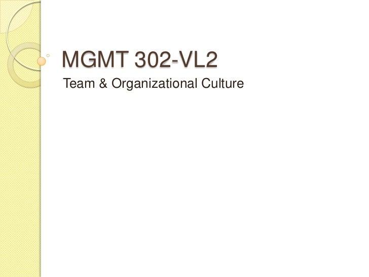 MGMT 302-VL2Team & Organizational Culture