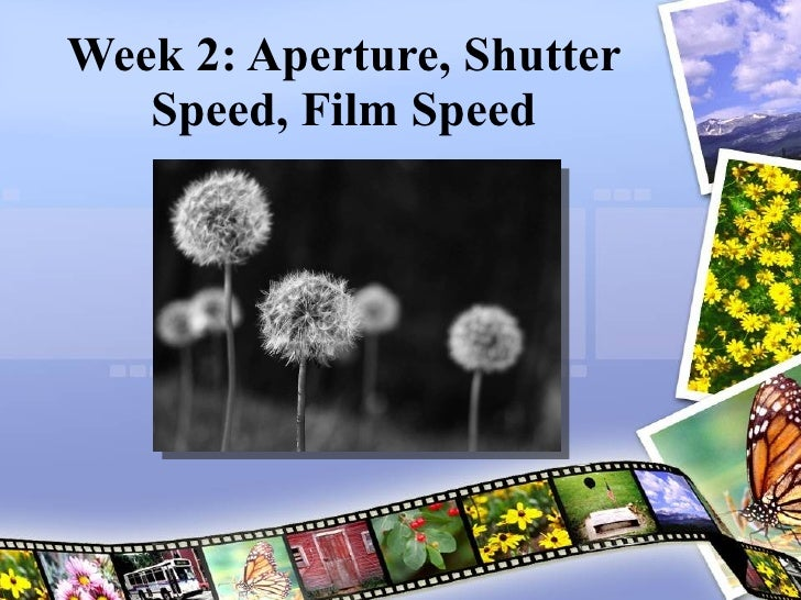 Week 2: Aperture, Shutter Speed, Film Speed Joel Kinison