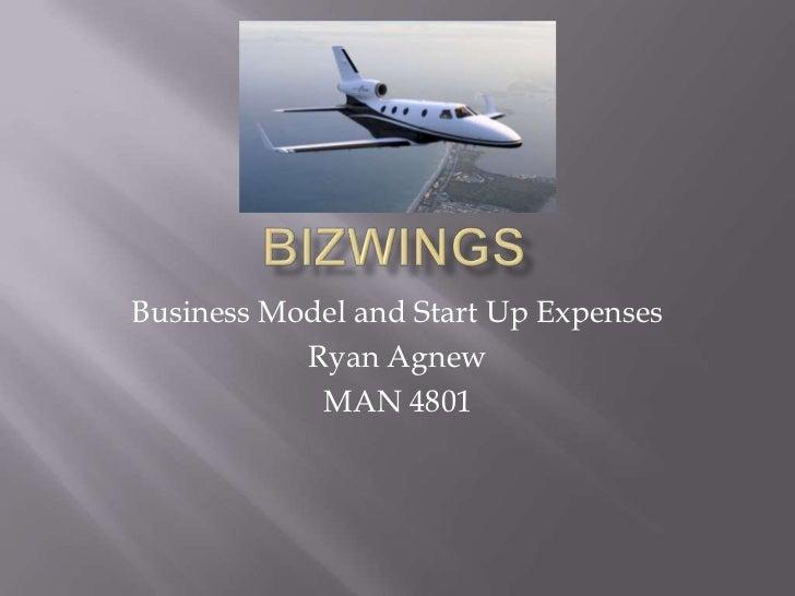 BizWings Startup Plan & Expenses