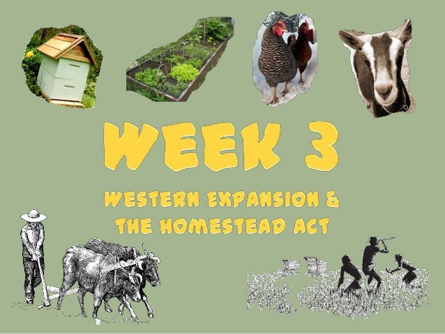 Week 3 - Western Expansion and Homestead Act