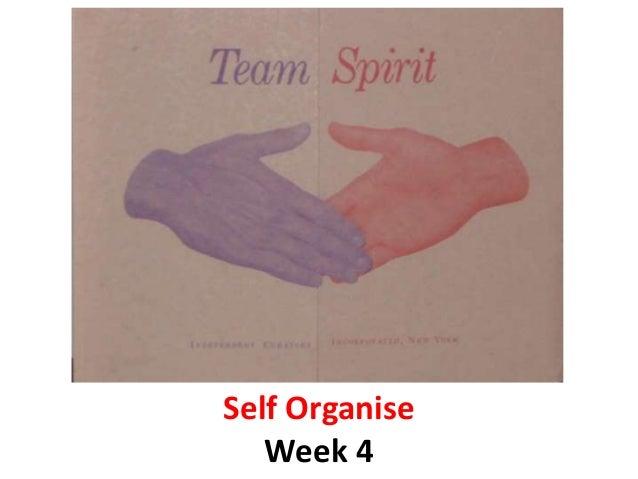 Self Organise Week 4
