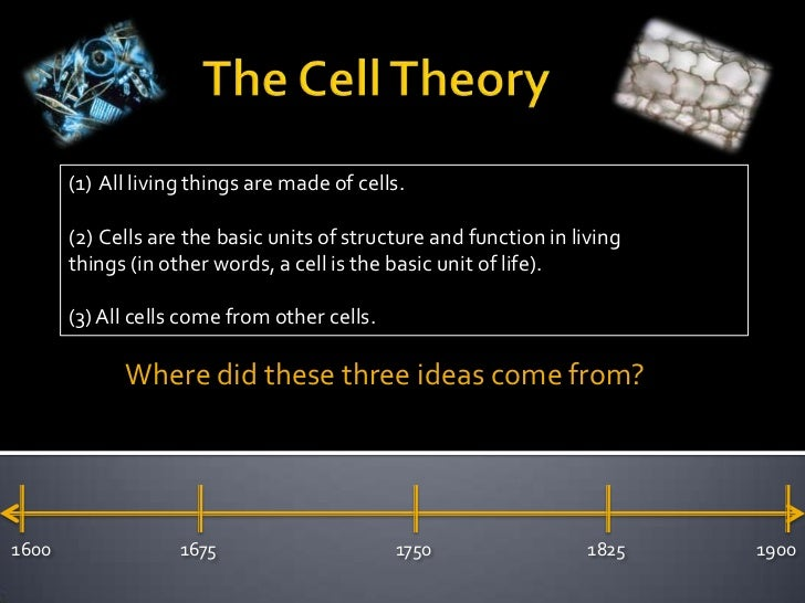 The Cell Theory<br />All living things are made of cells.<br />Cells are the basic units of structure and f...