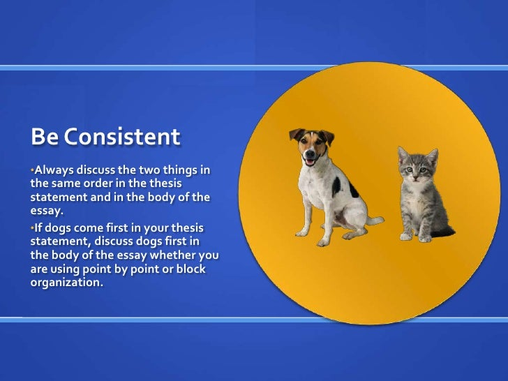 Dogs vs cats contrast essay
