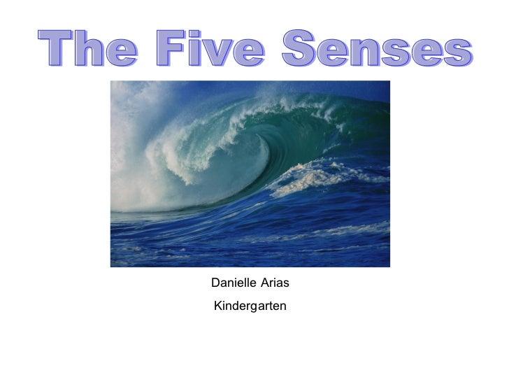 Danielle Arias Kindergarten The Five Senses