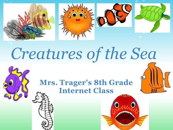 Sea Creatures Presentation