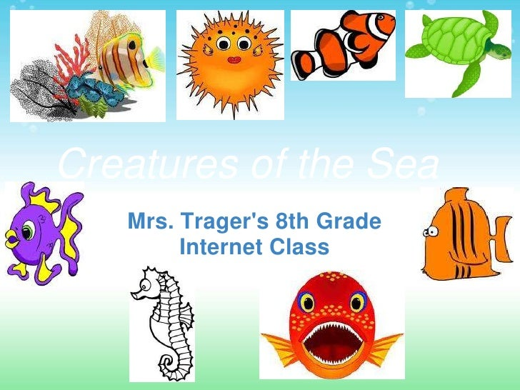 Week 8 sea_creatures_presentation