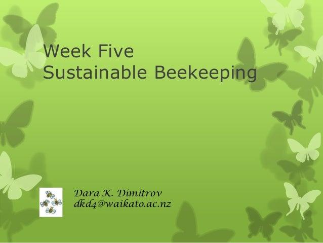 Week Five - Sustainable Bee Keeping