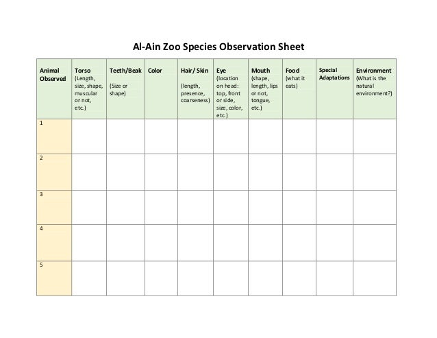Al-Ain Zoo Species Observation Sheet Animal Observed  1  2  3  4  5  Torso (Length, size, shape, muscular or not, etc.)  T...