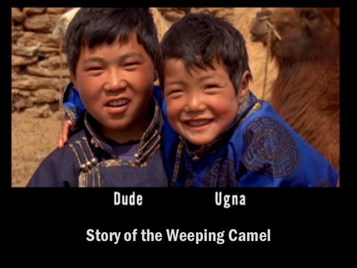 <ul><li>Story of the Weeping Camel </li></ul>