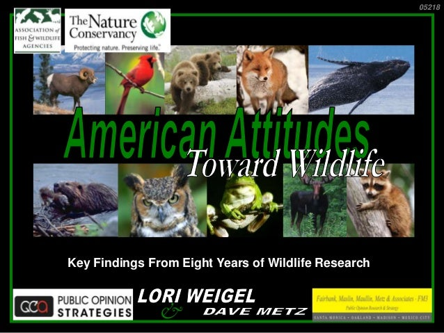 Key Findings From Eight Years of Wildlife Research 05218 &