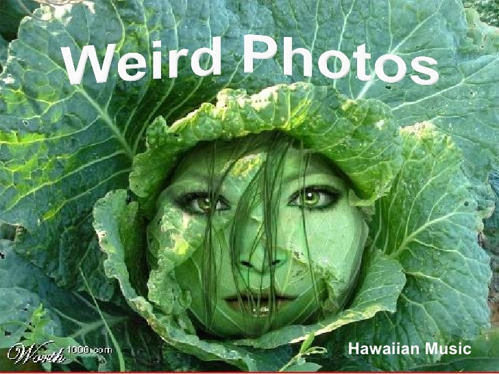 Weird Photos