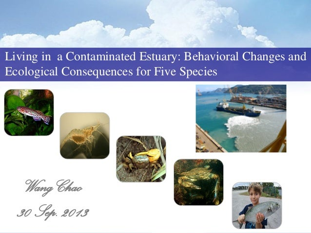 Living in a Contaminated Estuary: Behavioral Changes and Ecological Consequences for Five Species Wang Chao 30 Sep. 2013