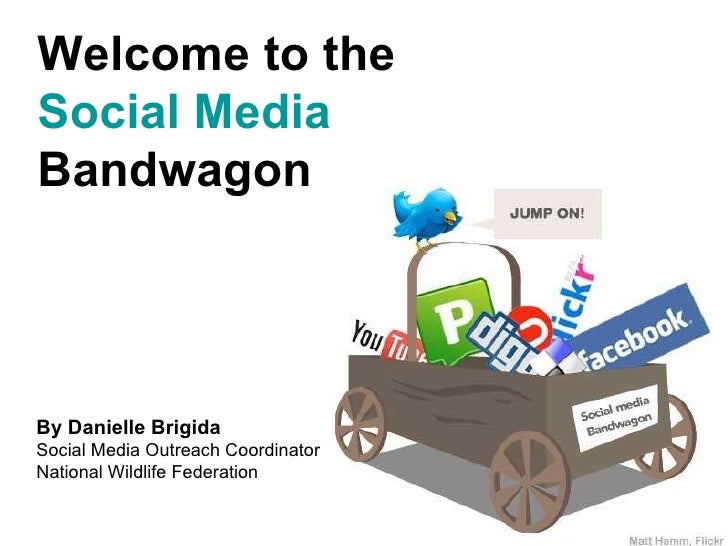 Welcome to the Social Media  Bandwagon  By Danielle Brigida Social Media Outreach Coordinator National Wildlife Federation