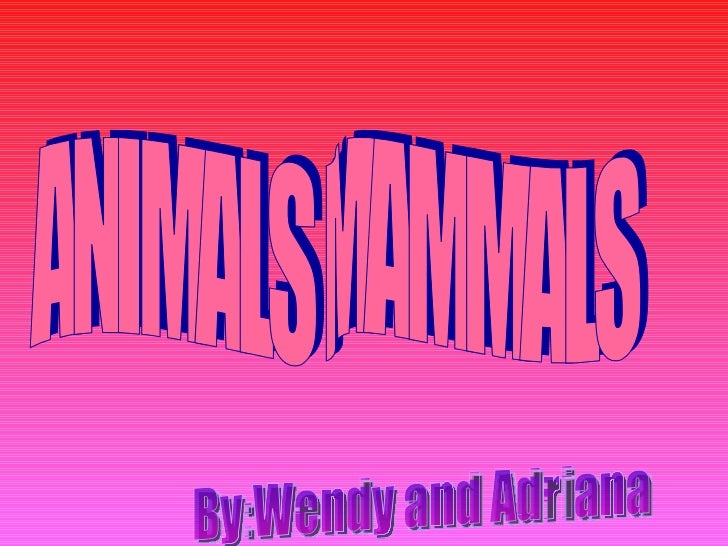 ANIMALS MAMMALS By:Wendy and Adriana