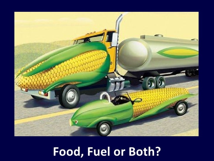 food versus fuel The book food versus fuel: an informed introduction to biofuels, edited by frank rosillo-calle and francis x johnson is published by zed books.
