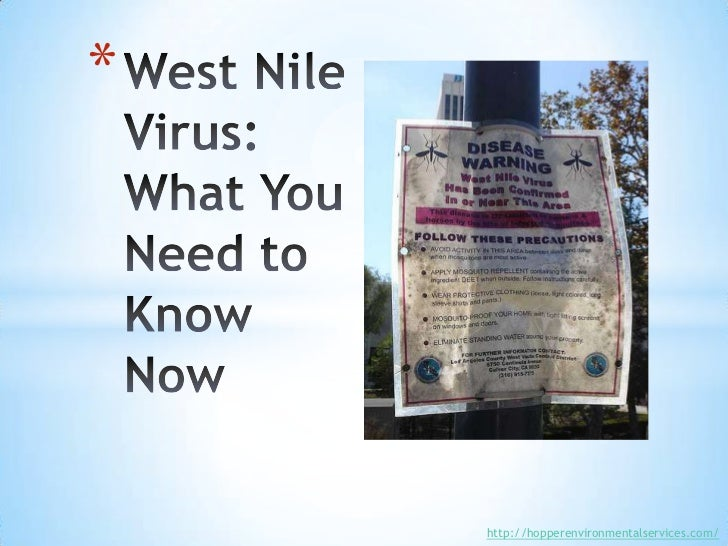 West Nile Virus: What You Need to Know Now