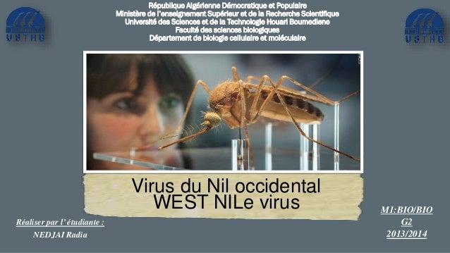 Virus du Nil occidental WEST NILe virus République Algérienne Démocratique et Populaire Ministère de l'enseignement Supéri...