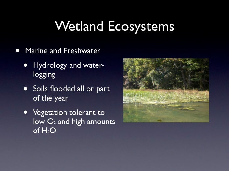 Wetland Ecosystems•   Marine and Freshwater    •   Hydrology and water-        logging    •   Soils flooded all or part    ...