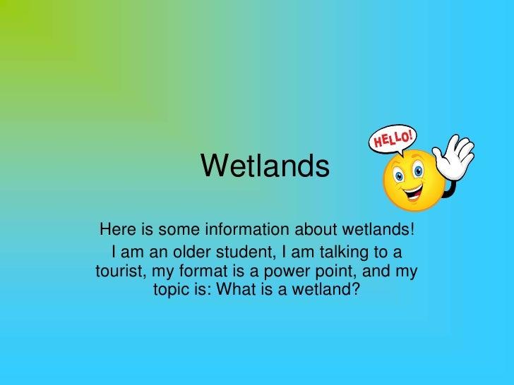 Wetlands by Alex M