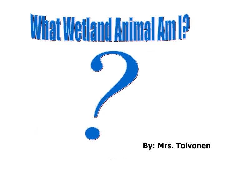Wetlandspecies