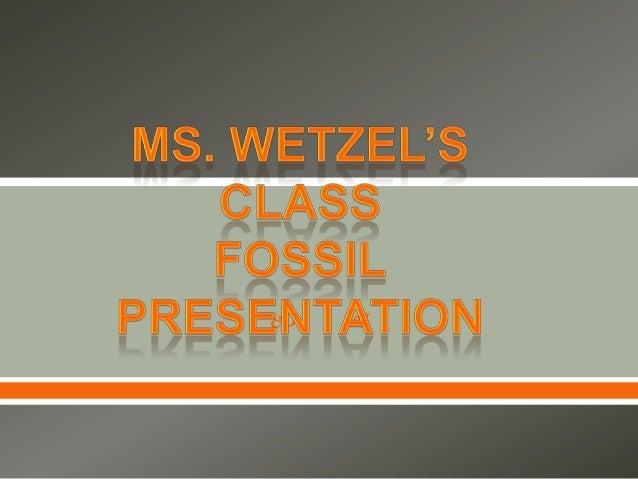 Ms. Wetzel's Class Fossil Presentation