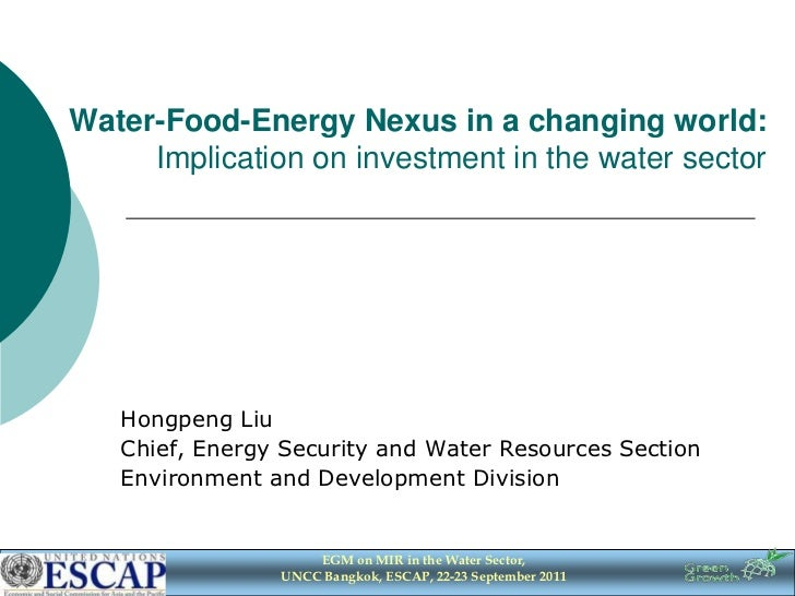 Water-Food-Energy Nexus in a changing world:     Implication on investment in the water sector   Hongpeng Liu   Chief, Ene...