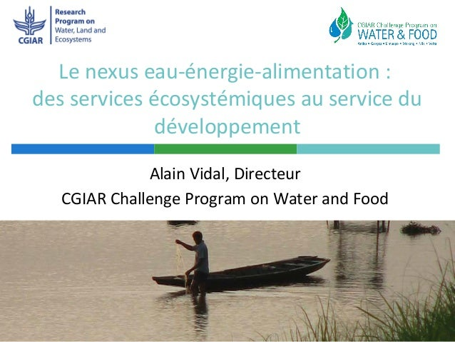 Le nexus eau-énergie-alimentation :des services écosystémiques au service du              développement              Alain...