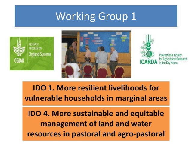 Working Group 1 IDO 1. More resilient livelihoods for vulnerable households in marginal areas IDO 4. More sustainable and ...