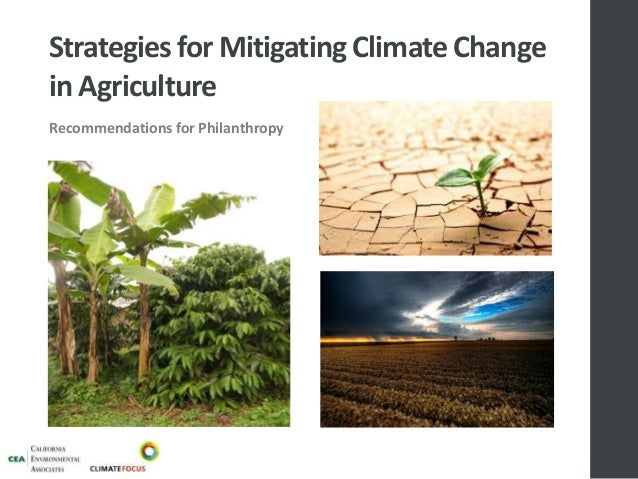 Strategies for Mitigating Climate Change in Agriculture Recommendations for Philanthropy