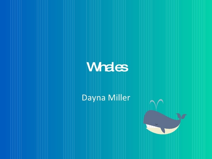 Whales  Dayna Miller