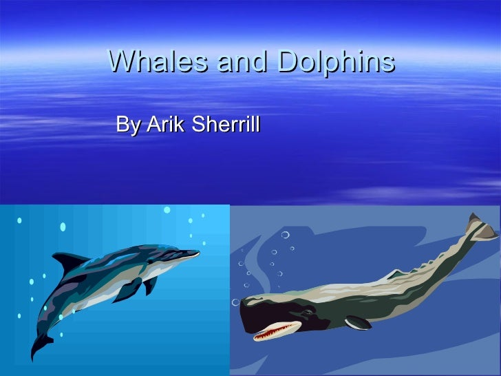Whales and Dolphins By Arik Sherrill