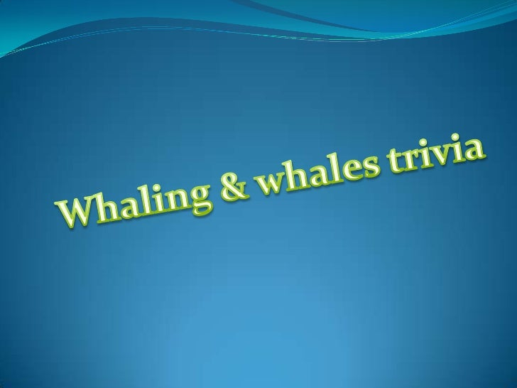 Whaling & whales trivia<br />