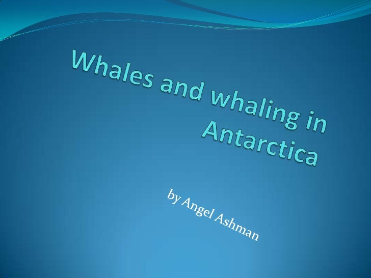 Whales and whaling in Antarctica <br />by Angel Ashman<br />