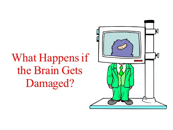 What Happens if the Brain Gets Damaged?