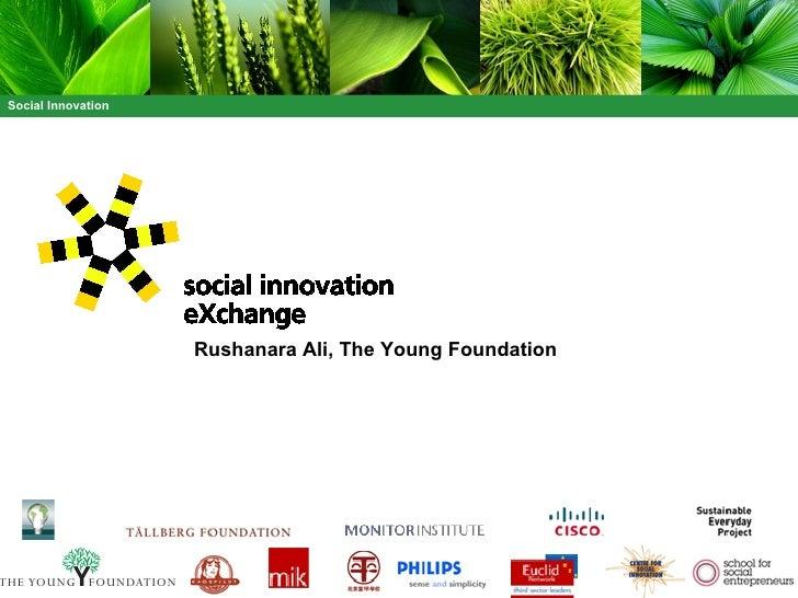 Rushanara Ali, The Young Foundation
