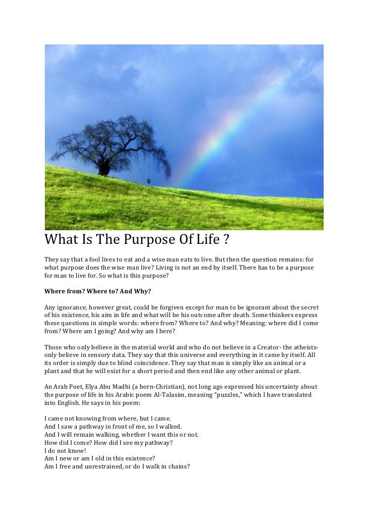 What Is The Purpose Of Life ? They say that a fool lives to eat and a wise man eats to live. But then the question remains...