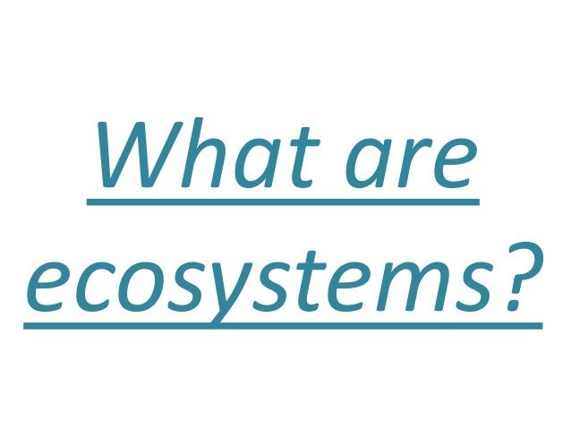 What areecosystems?