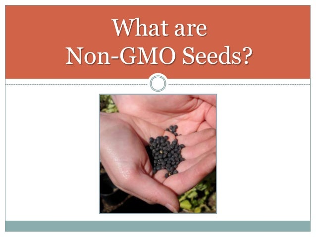 What are Non-GMO Seeds?