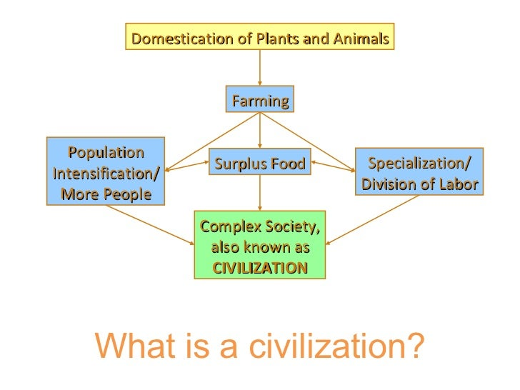 Domestication of Plants and Animals Farming Surplus Food Specialization/ Division of Labor Population Intensification/ Mor...