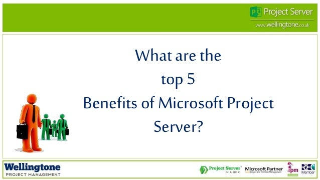 Ms project server resume blogs