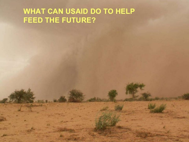 WHAT CAN USAID DO TO HELP  FEED THE FUTURE?