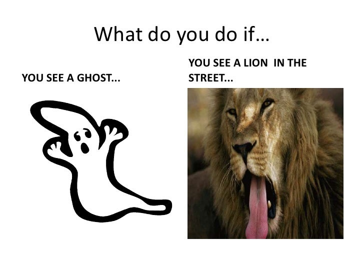 What do you do if…<br />YOU SEE A GHOST...<br />YOU SEE A LION  IN THE STREET...<br />