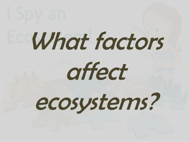 What factors influence ecosystems