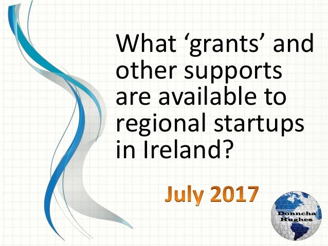 What 'grants' and other supports can startup business promoters avail of from enterprise support agencies in Ireland?