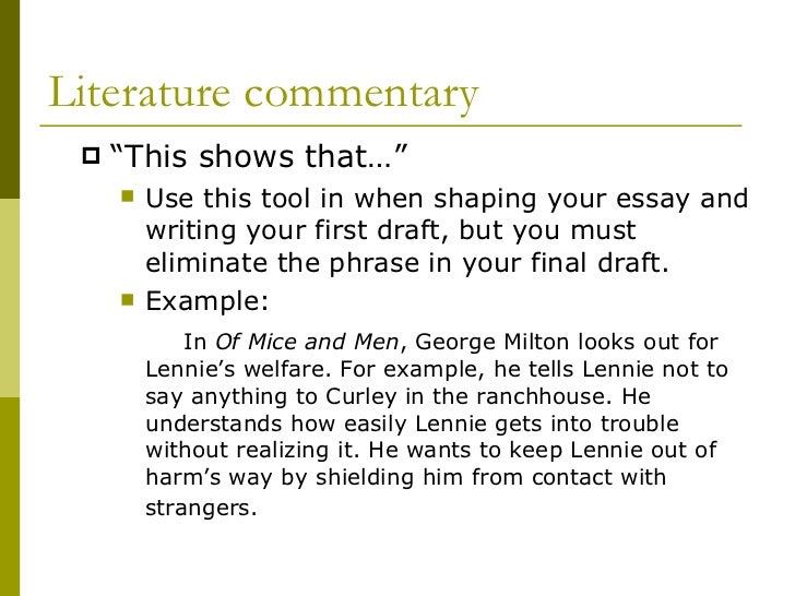 Commentary essay example