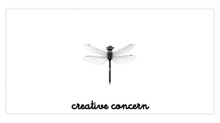 What is creative_concern?