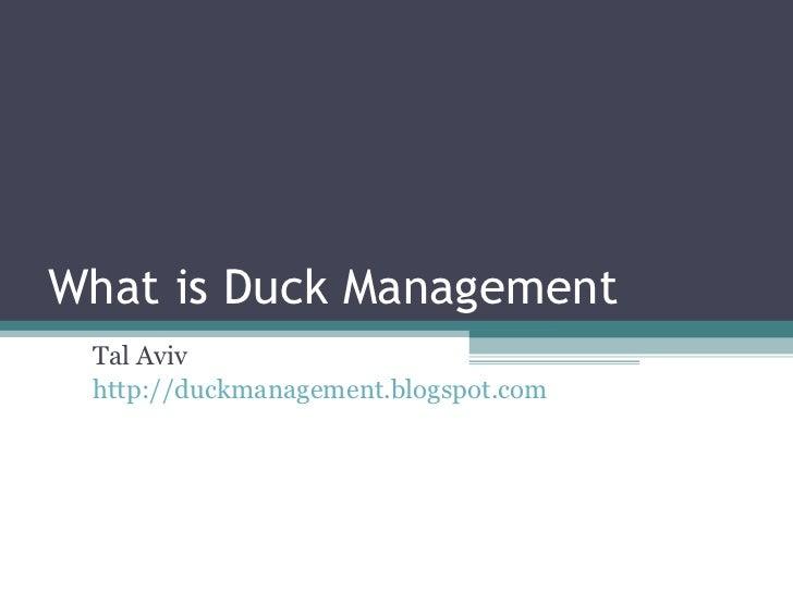 What is Duck Management Tal Aviv http://duckmanagement.blogspot.com