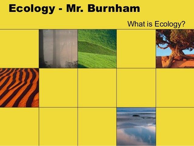Ecology - Mr. Burnham                  What is Ecology?